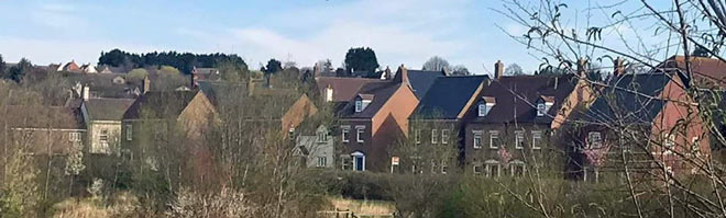 row of houses partially hidden behind trees
